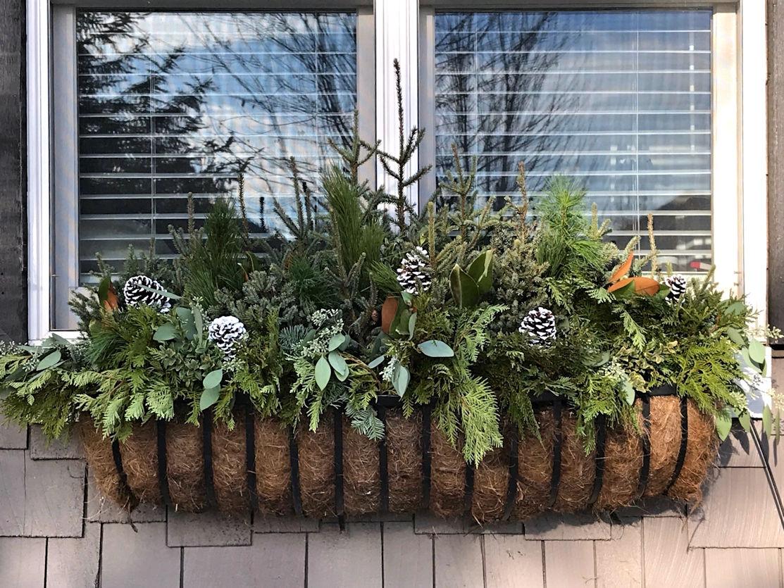 Seasonal Window Box Maintenance