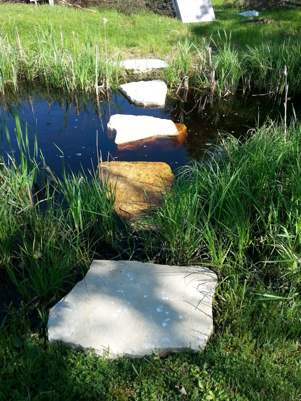 Decorative stepping stones create a unique and tempting bridge across this waterway.cross a backyard pond.