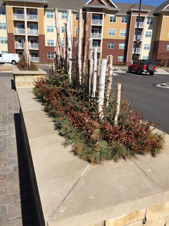 Hartman Companies Winter planters