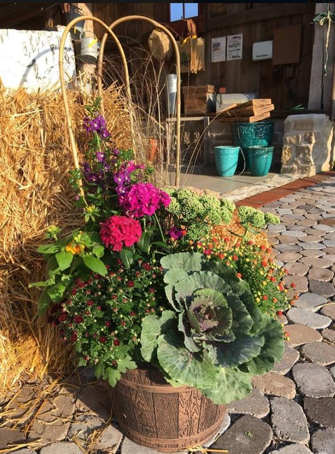 Seasonal pots